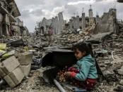 meses-guerra-ciudad-practicamente-destruida_TINIMA20150323_0508_19